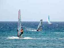 3 Hours ( half day ) Windsurfing